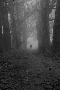 Caminante en la niebla